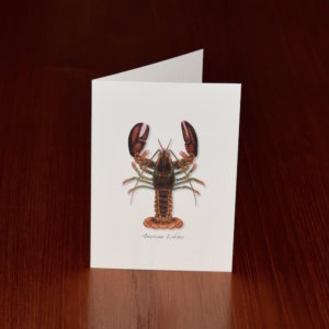 Nautical Note Cards