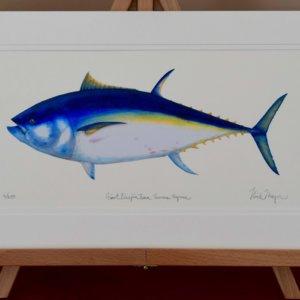 Giant Bluefin Tuna Print