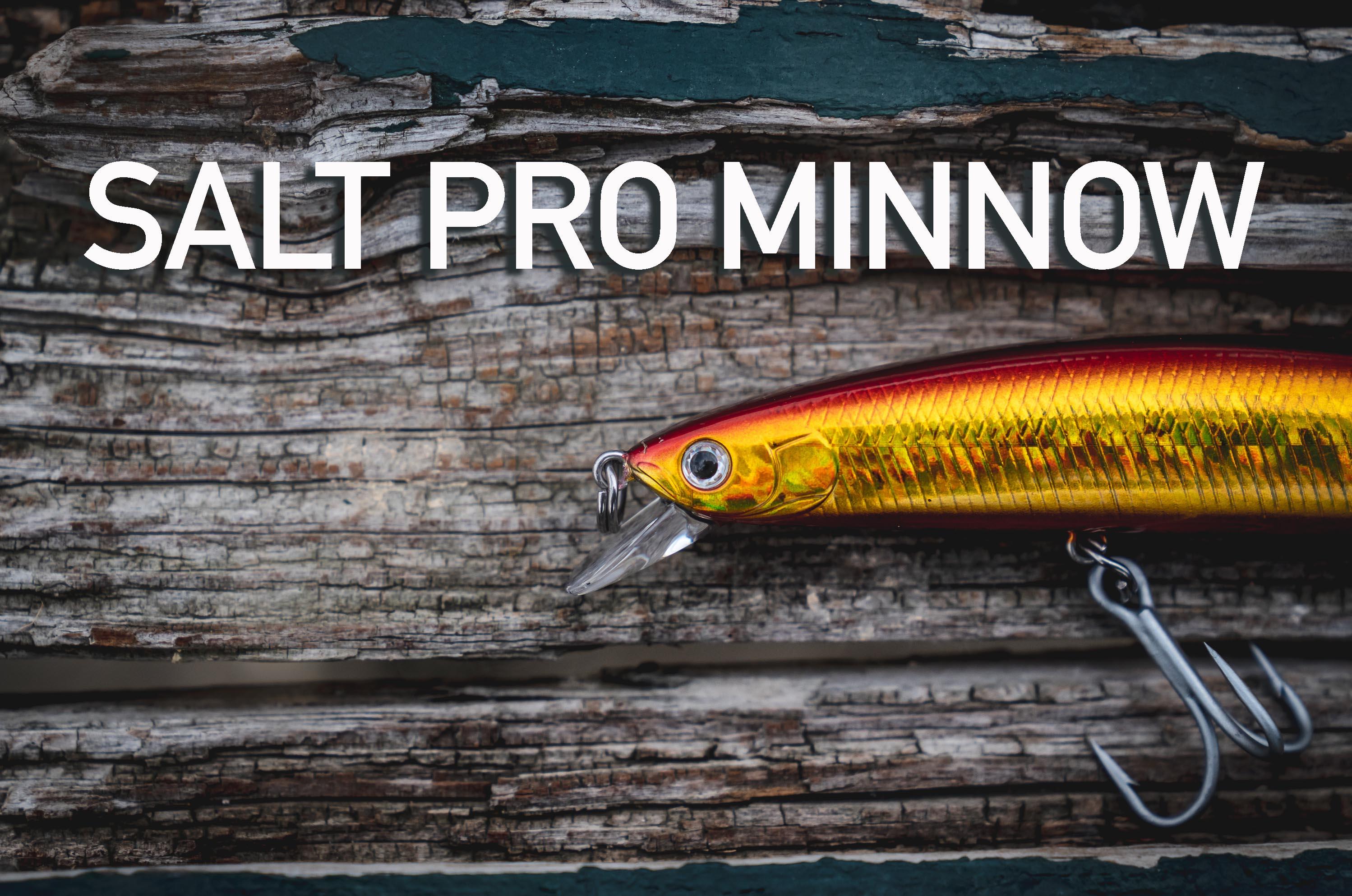Salt Pro Minnow